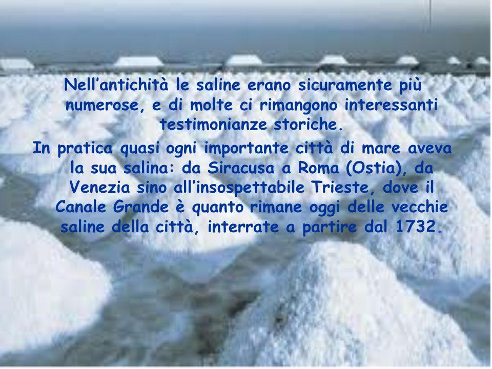 Nell'antichità le saline erano sicuramente più numerose, e di molte ci rimangono interessanti testimonianze storiche.