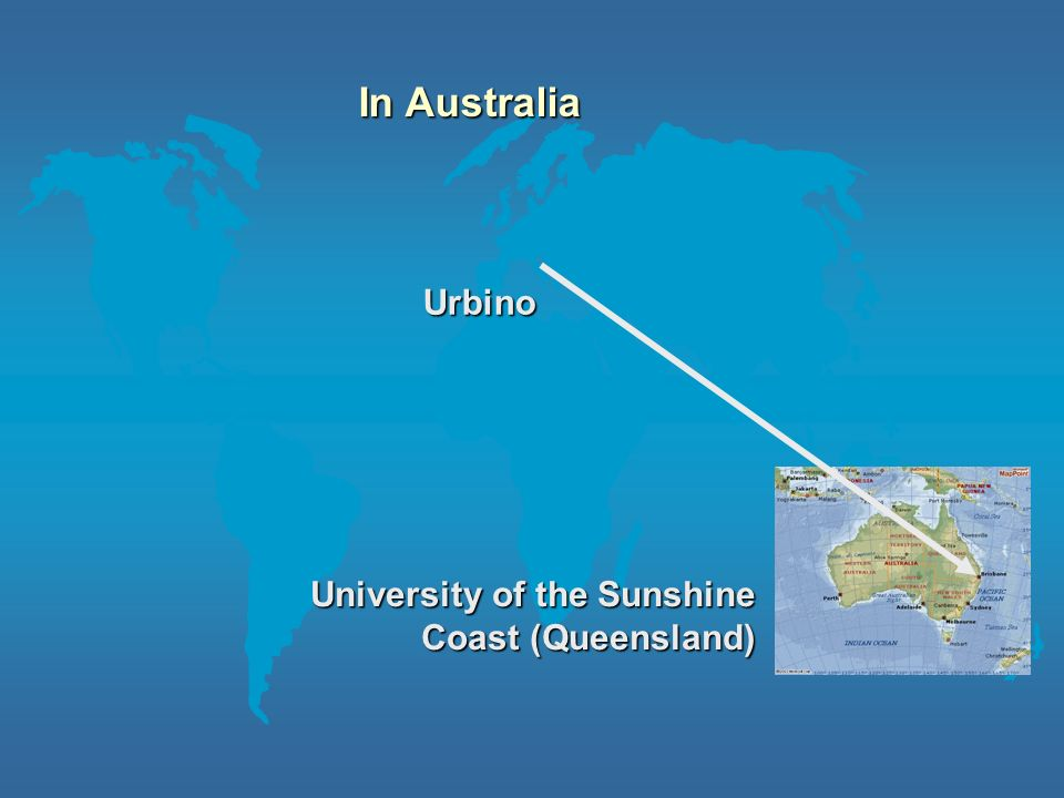 In Australia Urbino University of the Sunshine Coast (Queensland)
