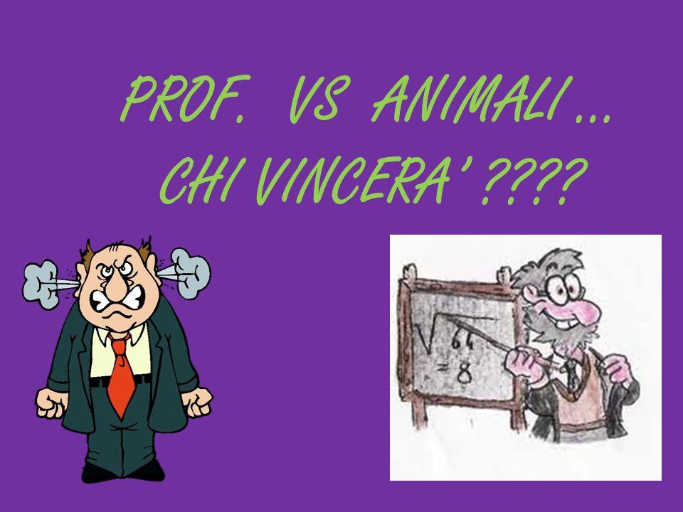 PROF. VS ANIMALI … CHI VINCERA'
