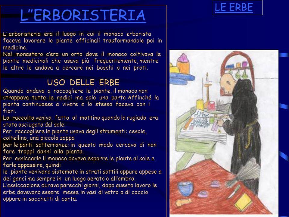 L''ERBORISTERIA LE ERBE USO DELLE ERBE