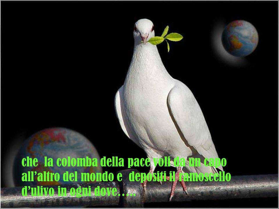 che la colomba della pace voli da un capo