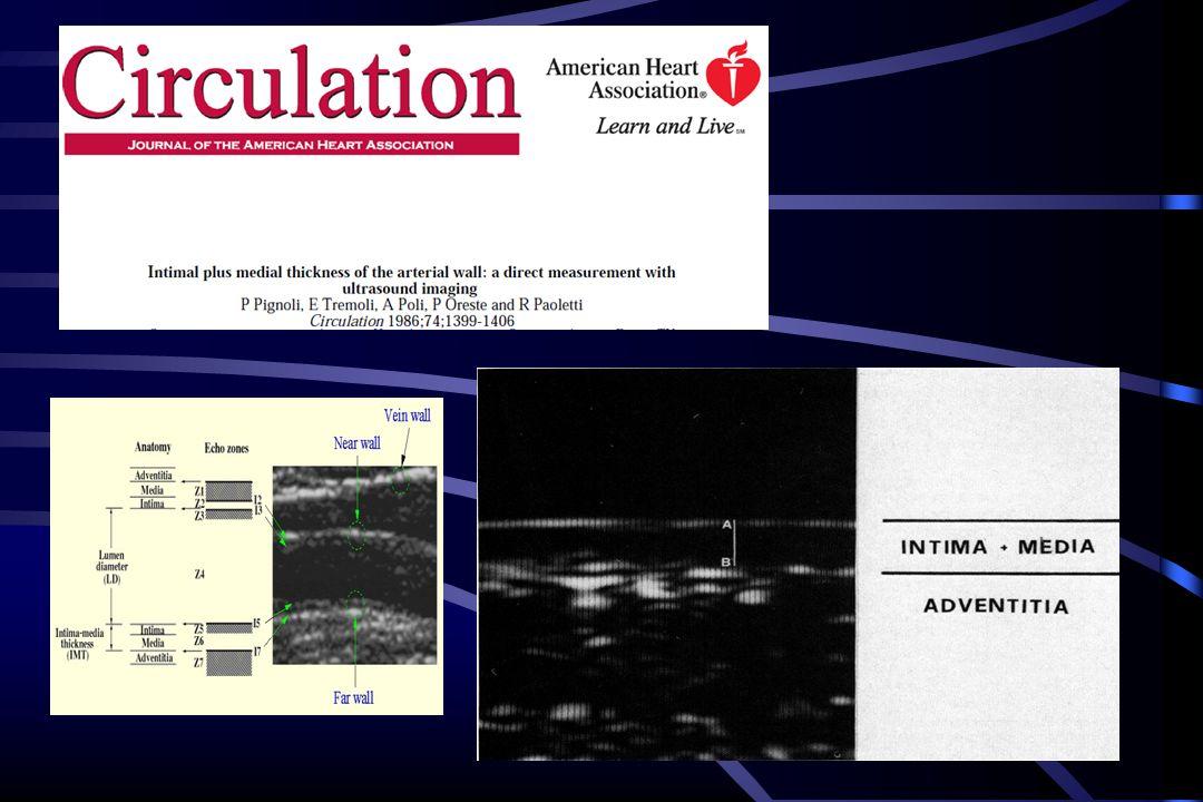 La validazione delle immagini ecocardiografiche e la corrispondenza anatomica con media ed intima si deve ad un gruppo italiano che coordinato dal Prof Renato Paoletti di Milano