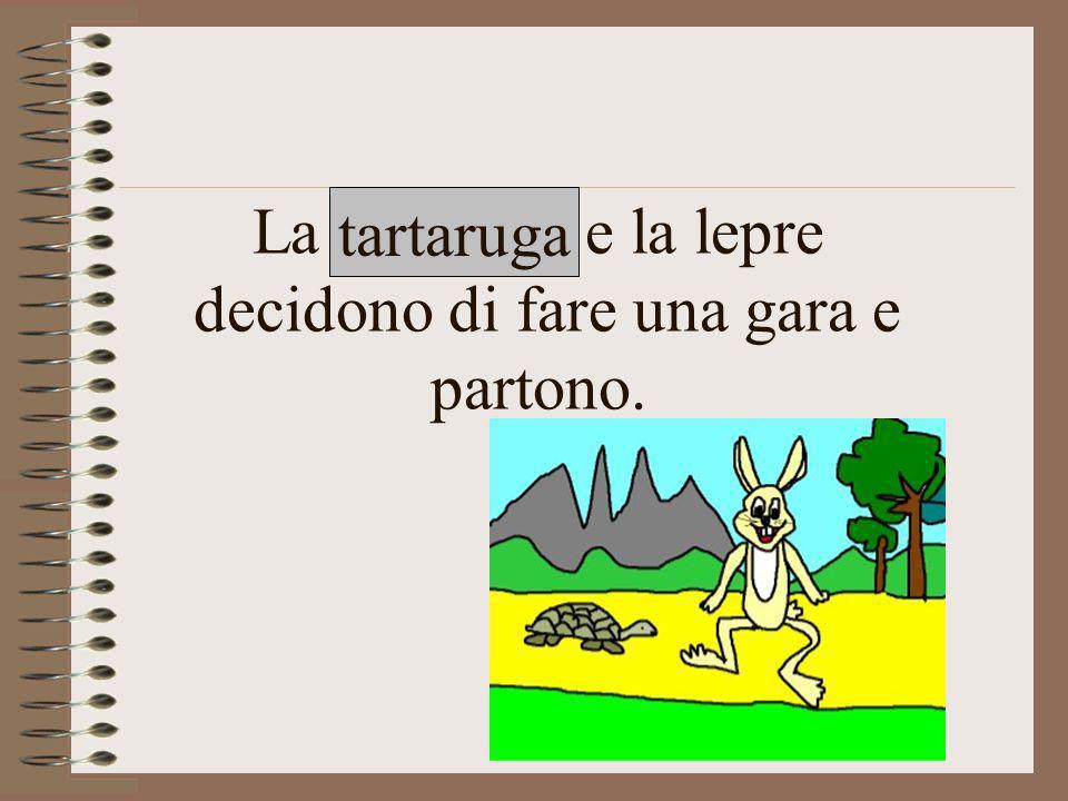 La tartaruga e la lepre decidono di fare una gara e partono.