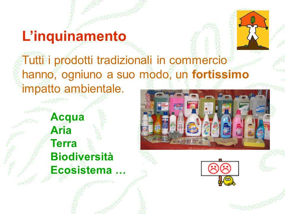 L'inquinamento Tutti i prodotti tradizionali in commercio hanno, ogniuno a suo modo, un fortissimo impatto ambientale.