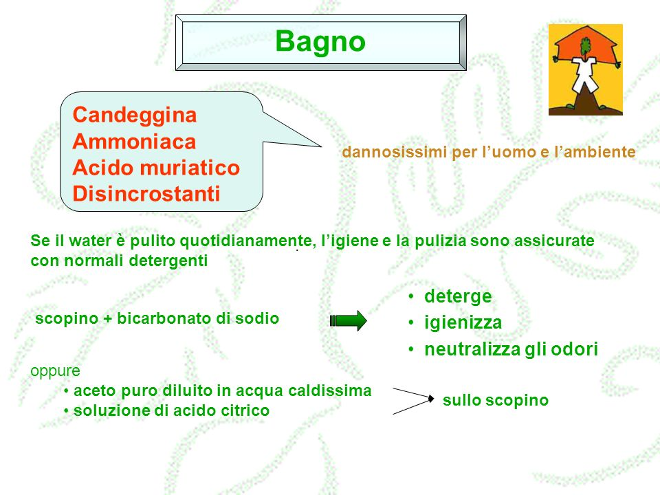 Bagno Candeggina Ammoniaca Acido muriatico Disincrostanti deterge