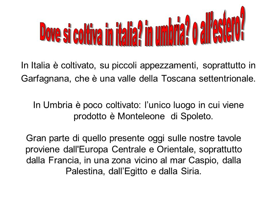 Dove si coltiva in italia in umbria o all'estero