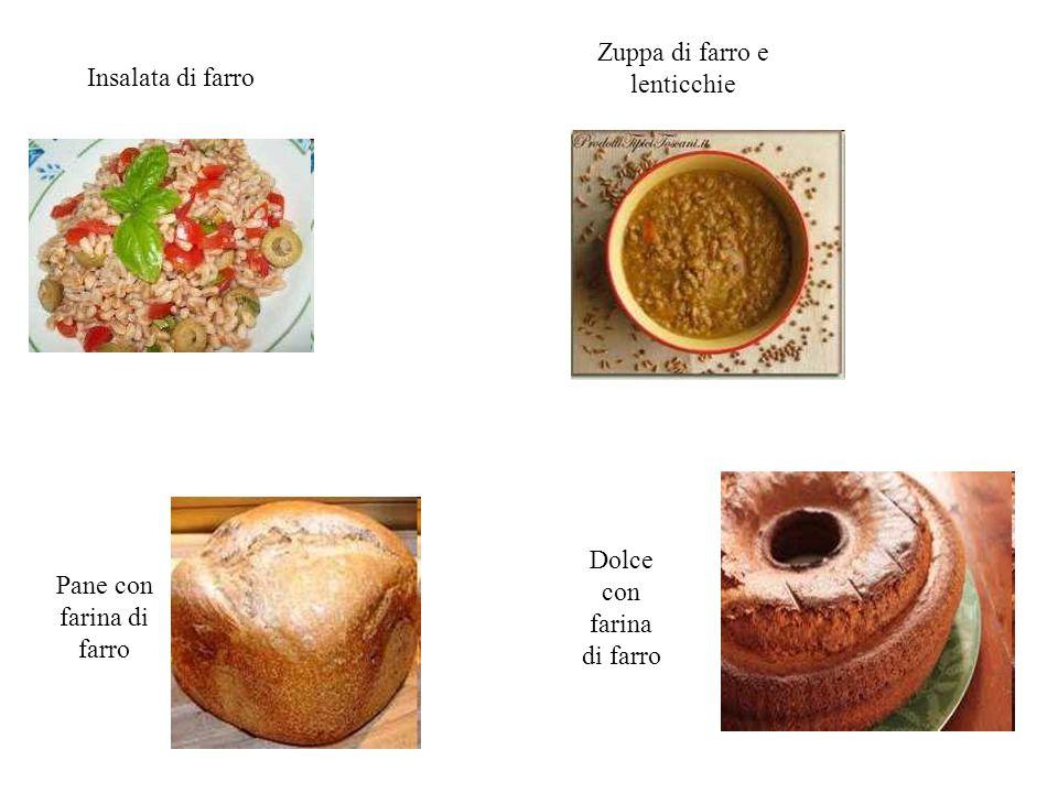 Zuppa di farro e lenticchie Insalata di farro