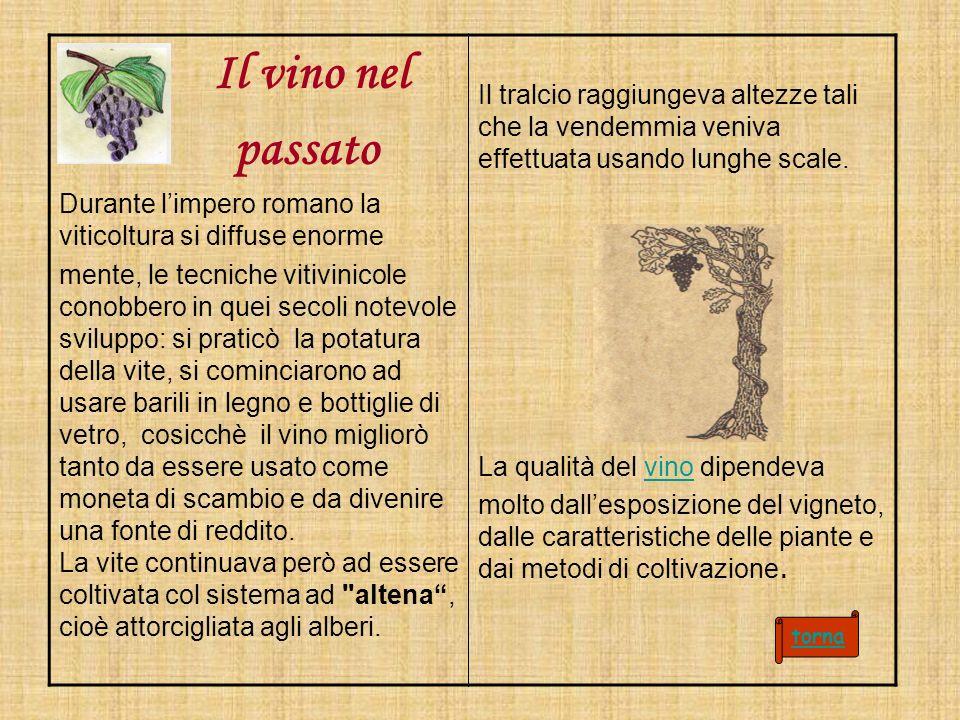 Il vino nel passato. Durante l'impero romano la viticoltura si diffuse enorme.