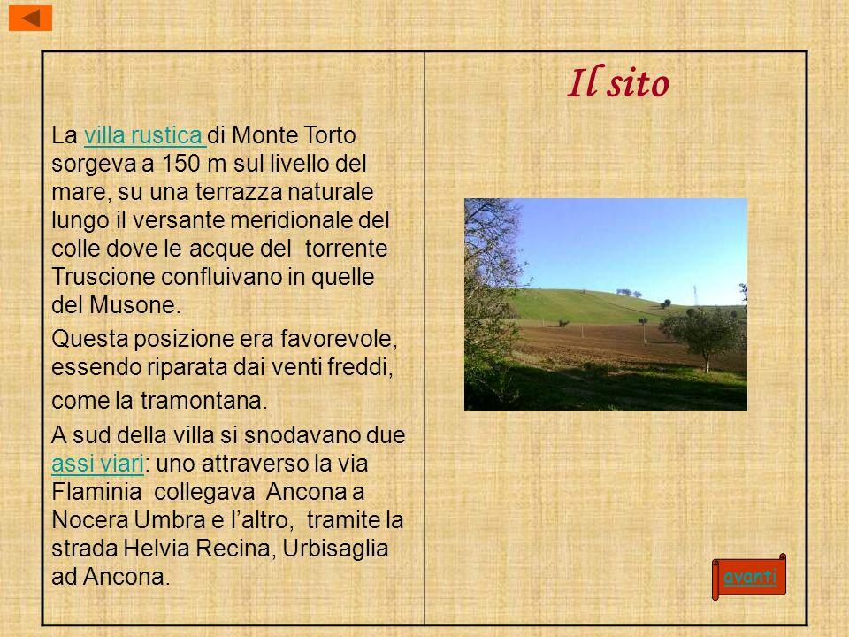 La villa rustica di Monte Torto sorgeva a 150 m sul livello del mare, su una terrazza naturale lungo il versante meridionale del colle dove le acque del torrente Truscione confluivano in quelle del Musone.