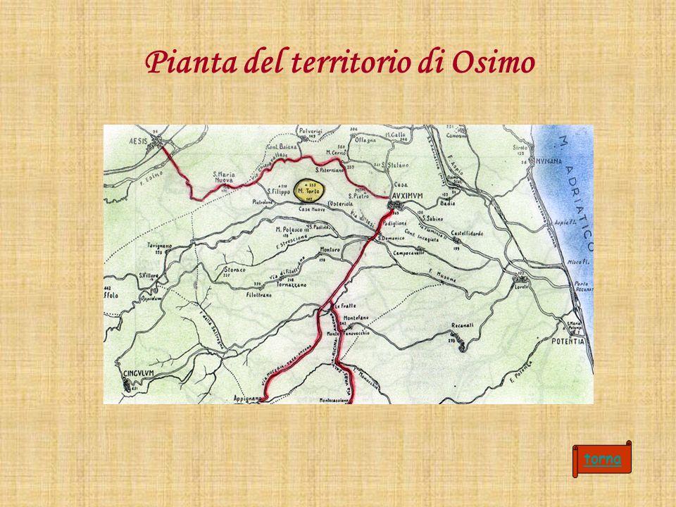 Pianta del territorio di Osimo