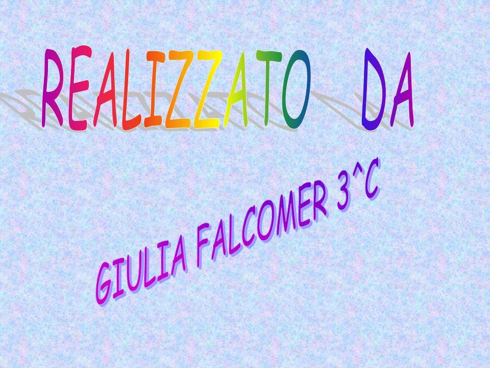 REALIZZATO DA GIULIA FALCOMER 3^C