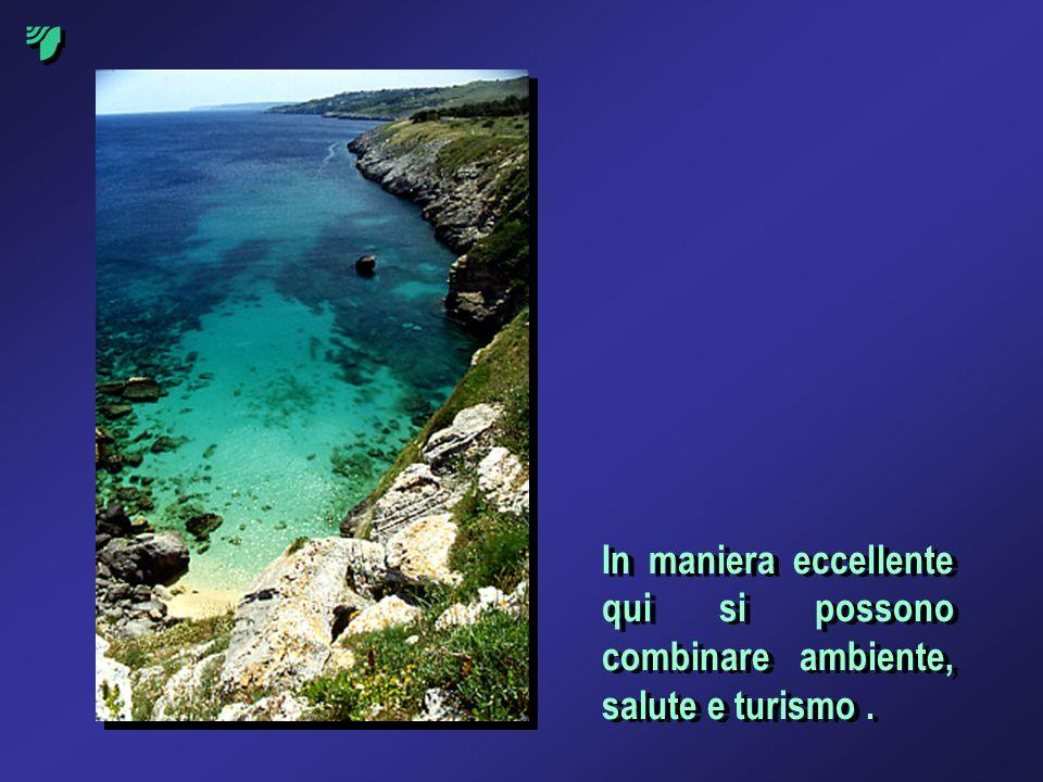 In maniera eccellente qui si possono combinare ambiente, salute e turismo .