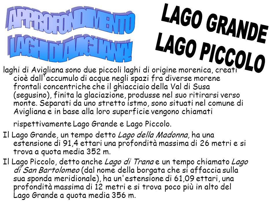 APPROFONDIMENTO LAGO GRANDE LAGHI DI AVIGLIANA! LAGO PICCOLO