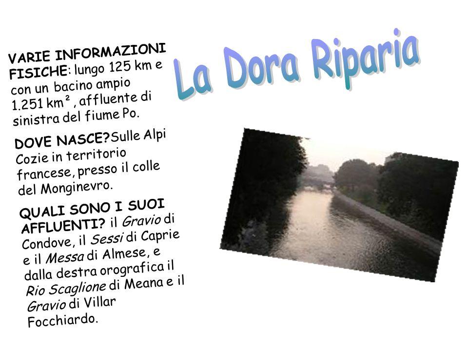 La Dora Riparia VARIE INFORMAZIONI FISICHE: lungo 125 km e con un bacino ampio 1.251 km², affluente di sinistra del fiume Po.