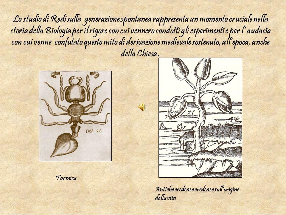 Lo studio di Redi sulla generazione spontanea rappresenta un momento cruciale nella storia della Biologia per il rigore con cui vennero condotti gli esperimenti e per l' audacia con cui venne confutato questo mito di derivazione medievale sostenuto, all'epoca, anche della Chiesa .