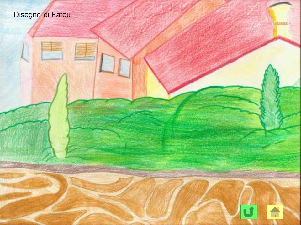 Disegno di Fatou