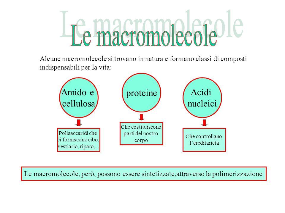 Le macromolecole proteine Amido e cellulosa Acidi nucleici