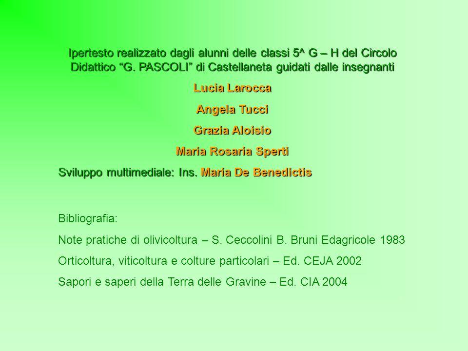 Ipertesto realizzato dagli alunni delle classi 5^ G – H del Circolo Didattico G. PASCOLI di Castellaneta guidati dalle insegnanti