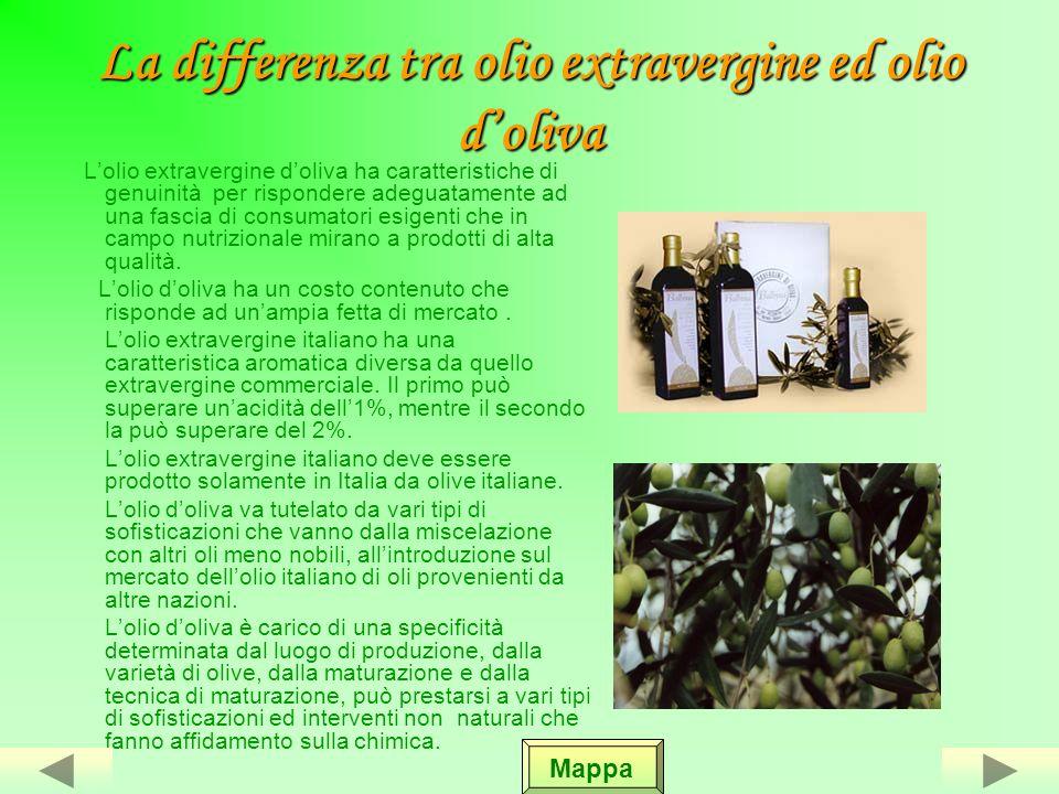 La differenza tra olio extravergine ed olio d'oliva
