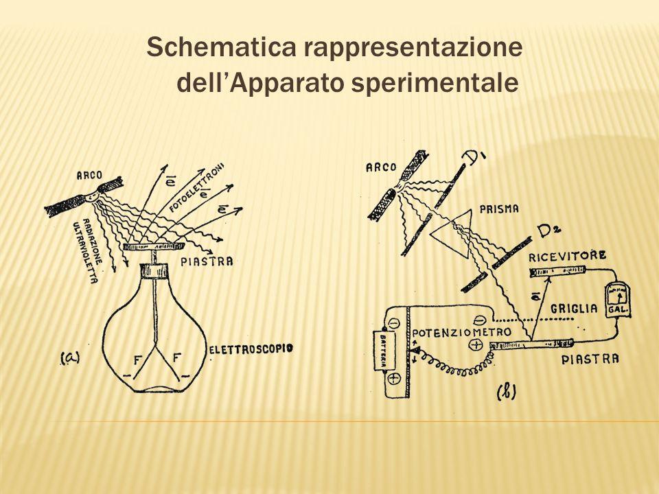 Schematica rappresentazione dell'Apparato sperimentale