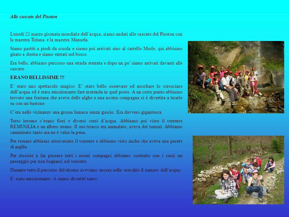 Alle cascate del Pisoton