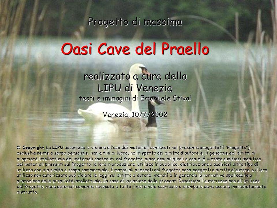 Progetto di massima Oasi Cave del Praello realizzato a cura della LIPU di Venezia testi e immagini di Emanuele Stival Venezia, 10/7/2002
