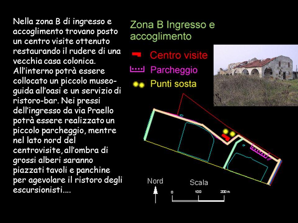 Nella zona B di ingresso e accoglimento trovano posto un centro visite ottenuto restaurando il rudere di una vecchia casa colonica.
