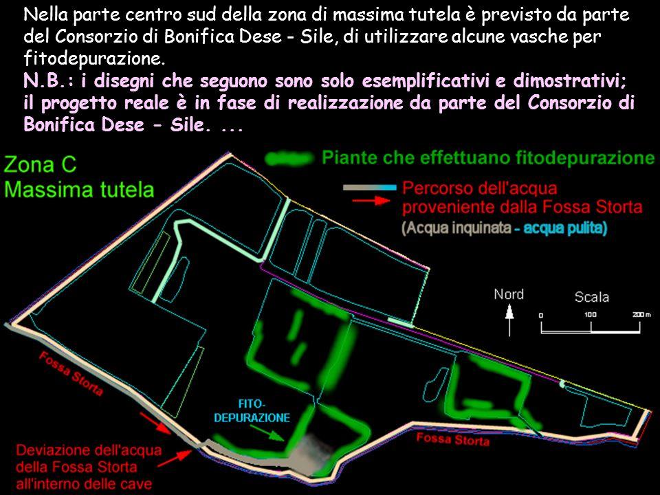 Nella parte centro sud della zona di massima tutela è previsto da parte del Consorzio di Bonifica Dese - Sile, di utilizzare alcune vasche per fitodepurazione.