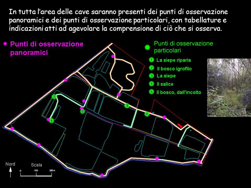 In tutta l'area delle cave saranno presenti dei punti di osservazione panoramici e dei punti di osservazione particolari, con tabellature e indicazioni atti ad agevolare la comprensione di ciò che si osserva.
