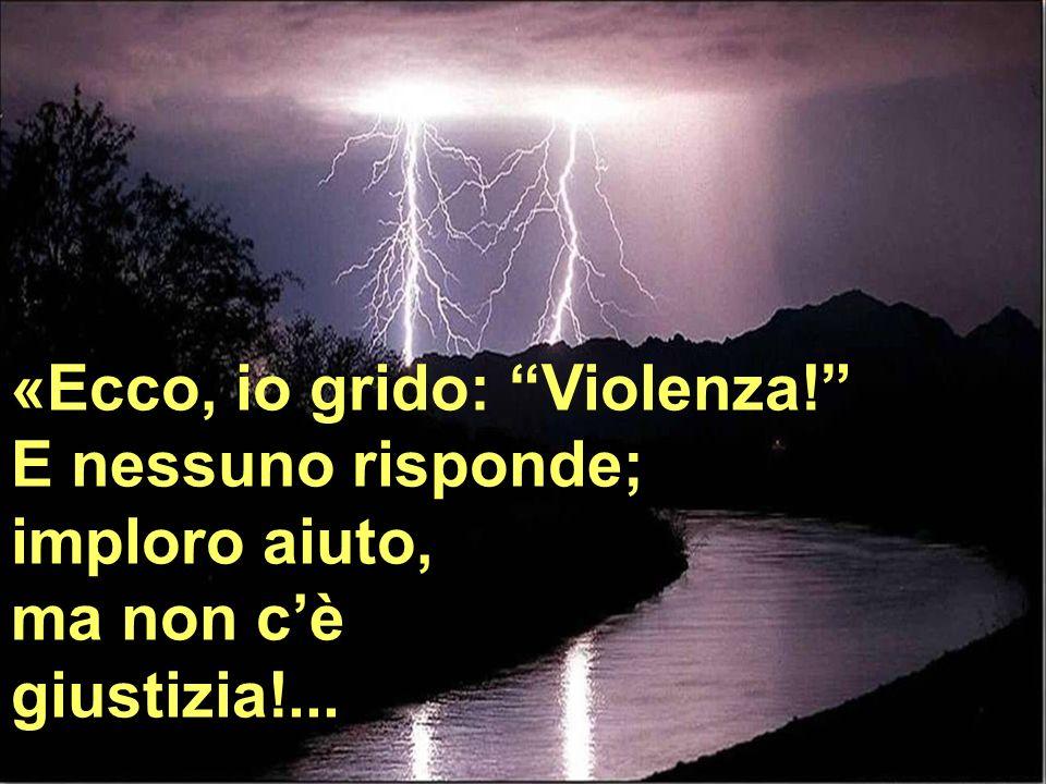 «Ecco, io grido: Violenza