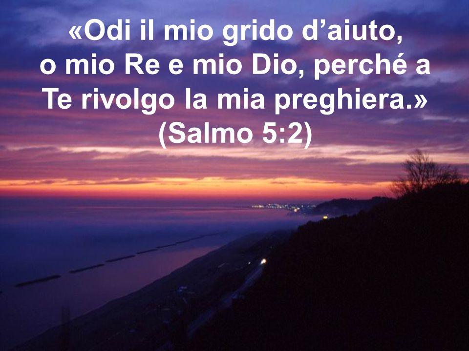 «Odi il mio grido d'aiuto, o mio Re e mio Dio, perché a Te rivolgo la mia preghiera.»