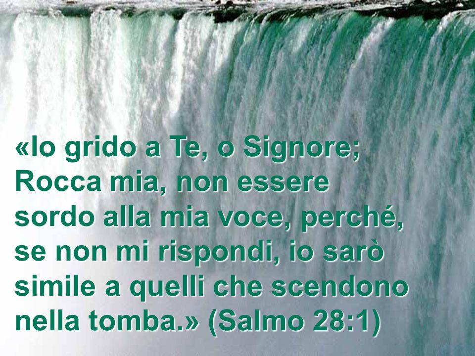 «Io grido a Te, o Signore; Rocca mia, non essere sordo alla mia voce, perché, se non mi rispondi, io sarò simile a quelli che scendono nella tomba.» (Salmo 28:1)