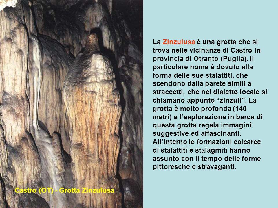 La Zinzulusa è una grotta che si trova nelle vicinanze di Castro in provincia di Otranto (Puglia). Il particolare nome è dovuto alla forma delle sue stalattiti, che scendono dalla parete simili a straccetti, che nel dialetto locale si chiamano appunto zinzuli . La grotta è molto profonda (140 metri) e l'esplorazione in barca di questa grotta regala immagini suggestive ed affascinanti. All'interno le formazioni calcaree di stalattiti e stalagmiti hanno assunto con il tempo delle forme pittoresche e stravaganti.