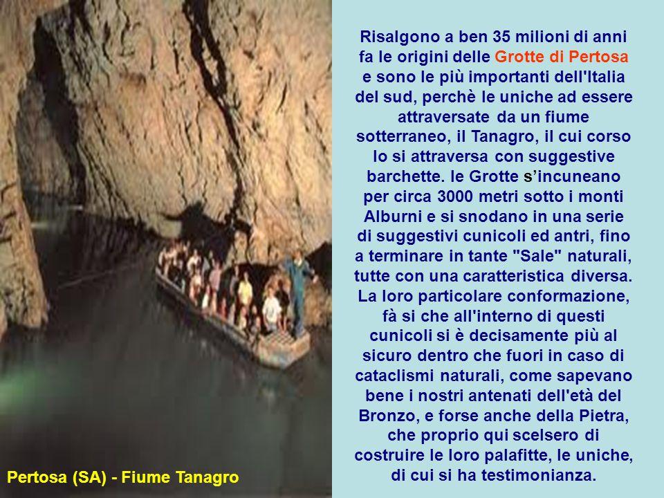 Risalgono a ben 35 milioni di anni fa le origini delle Grotte di Pertosa e sono le più importanti dell Italia del sud, perchè le uniche ad essere attraversate da un fiume sotterraneo, il Tanagro, il cui corso lo si attraversa con suggestive barchette. le Grotte s'incuneano per circa 3000 metri sotto i monti Alburni e si snodano in una serie di suggestivi cunicoli ed antri, fino a terminare in tante Sale naturali, tutte con una caratteristica diversa. La loro particolare conformazione, fà si che all interno di questi cunicoli si è decisamente più al sicuro dentro che fuori in caso di cataclismi naturali, come sapevano bene i nostri antenati dell età del Bronzo, e forse anche della Pietra, che proprio qui scelsero di costruire le loro palafitte, le uniche, di cui si ha testimonianza.