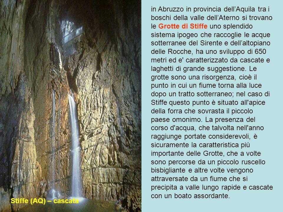 in Abruzzo in provincia dell'Aquila tra i boschi della valle dell'Aterno si trovano le Grotte di Stiffe uno splendido sistema ipogeo che raccoglie le acque sotterranee del Sirente e dell'altopiano delle Rocche, ha uno sviluppo di 650 metri ed e caratterizzato da cascate e laghetti di grande suggestione. Le grotte sono una risorgenza, cioè il punto in cui un fiume torna alla luce dopo un tratto sotterraneo; nel caso di Stiffe questo punto è situato all apice della forra che sovrasta il piccolo paese omonimo. La presenza del corso d acqua, che talvolta nell anno raggiunge portate considerevoli, è sicuramente la caratteristica più importante delle Grotte, che a volte sono percorse da un piccolo ruscello bisbigliante e altre volte vengono attraversate da un fiume che si precipita a valle lungo rapide e cascate con un boato assordante.
