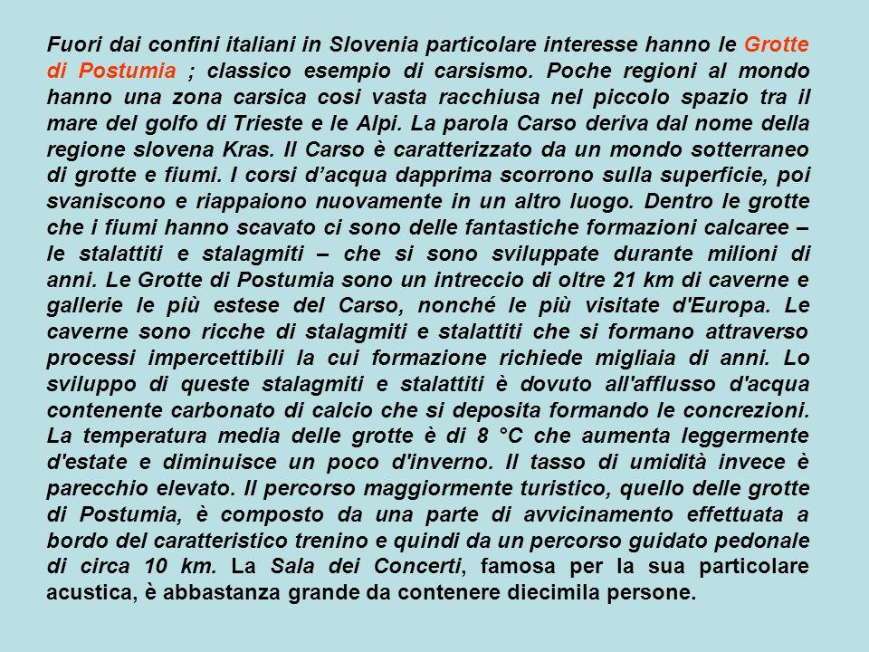 Fuori dai confini italiani in Slovenia particolare interesse hanno le Grotte di Postumia ; classico esempio di carsismo.