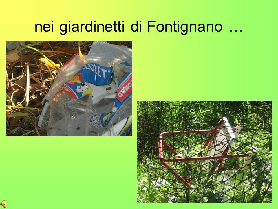 nei giardinetti di Fontignano …