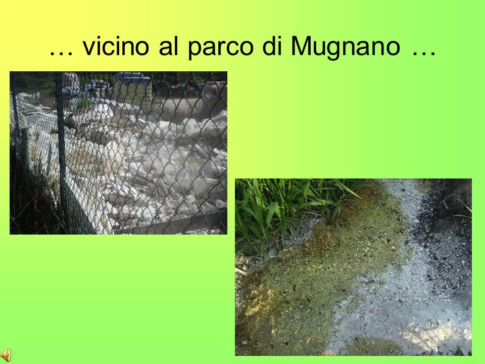 … vicino al parco di Mugnano …