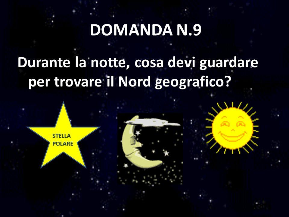DOMANDA N.9 Durante la notte, cosa devi guardare per trovare il Nord geografico STELLA POLARE