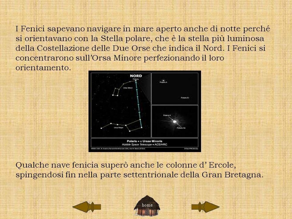 I Fenici sapevano navigare in mare aperto anche di notte perché si orientavano con la Stella polare, che è la stella più luminosa della Costellazione delle Due Orse che indica il Nord.