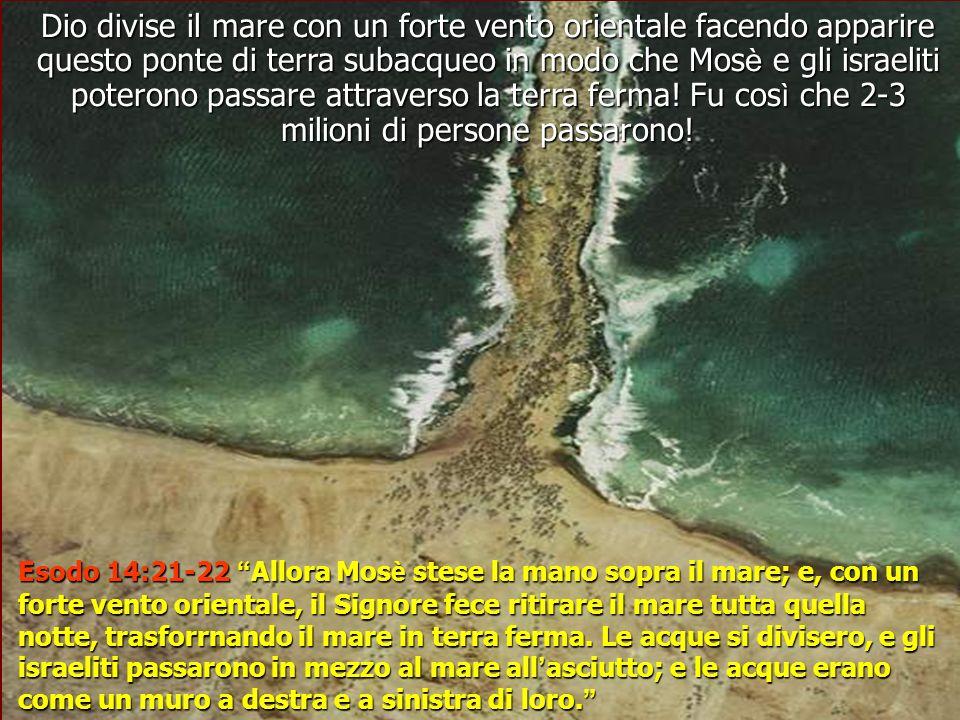Dio divise il mare con un forte vento orientale facendo apparire questo ponte di terra subacqueo in modo che Mosè e gli israeliti poterono passare attraverso la terra ferma! Fu così che 2-3 milioni di persone passarono!