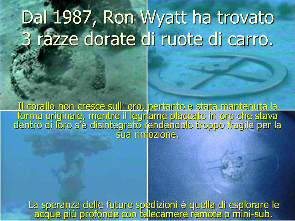 Dal 1987, Ron Wyatt ha trovato 3 razze dorate di ruote di carro.