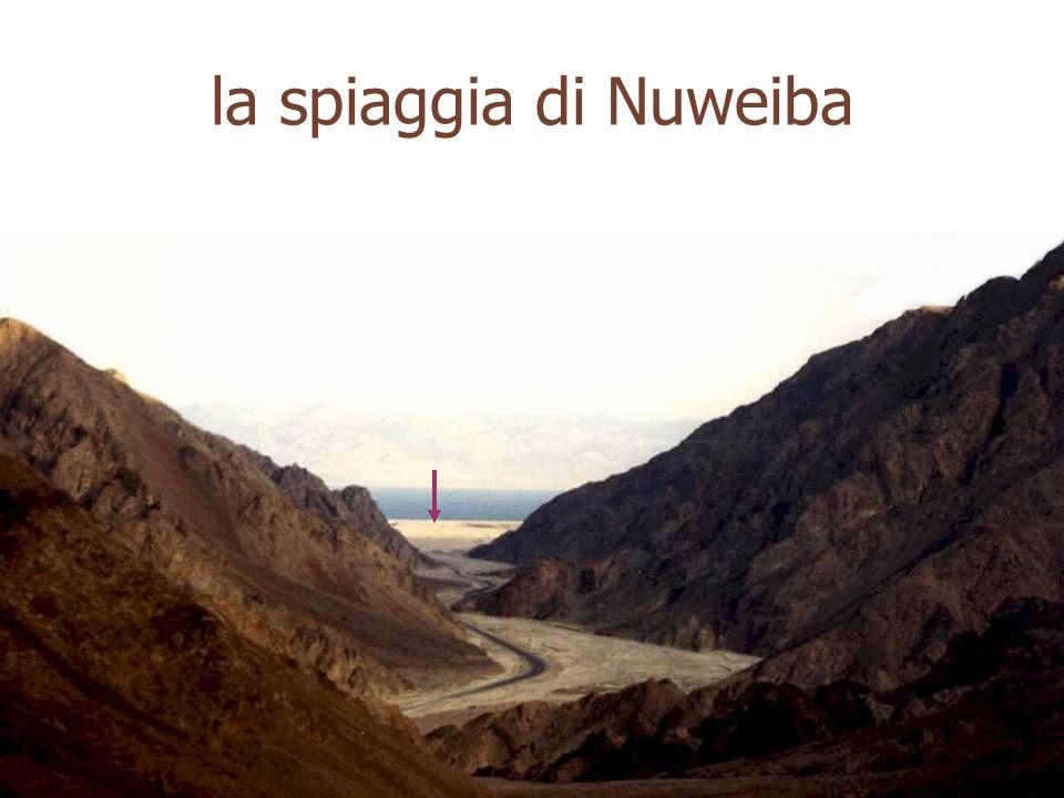 la spiaggia di Nuweiba