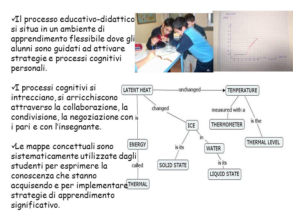 Il processo educativo-didattico si situa in un ambiente di apprendimento flessibile dove gli alunni sono guidati ad attivare strategie e processi cognitivi personali.
