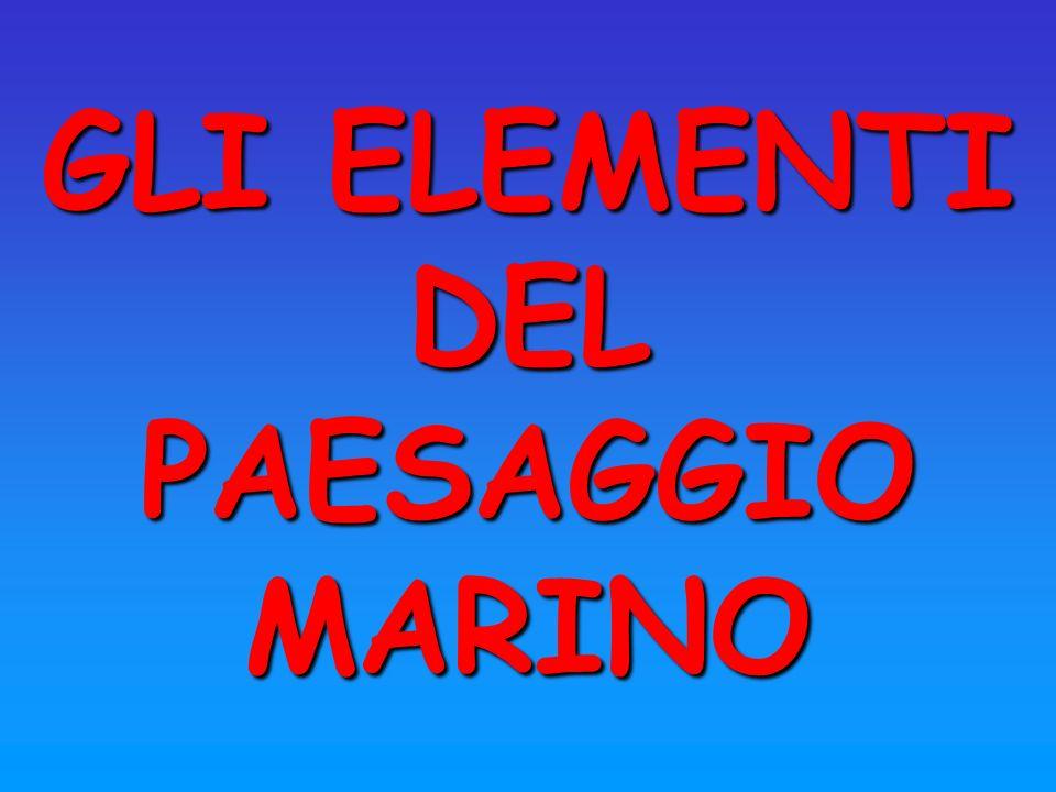 GLI ELEMENTI DEL PAESAGGIO MARINO