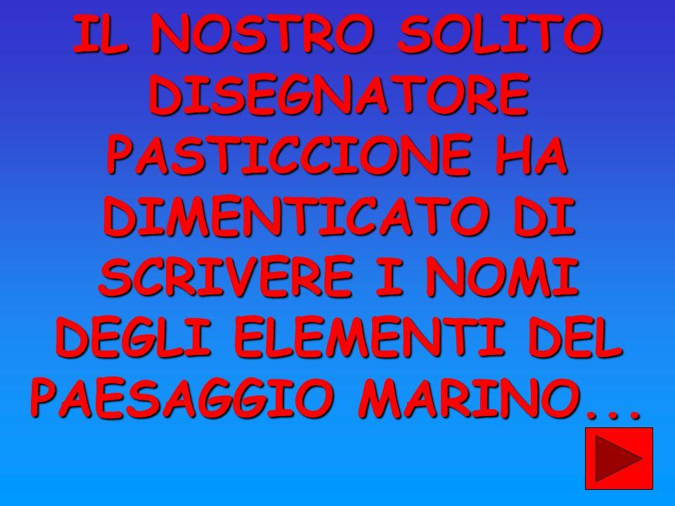 IL NOSTRO SOLITO DISEGNATORE PASTICCIONE HA DIMENTICATO DI SCRIVERE I NOMI DEGLI ELEMENTI DEL PAESAGGIO MARINO...
