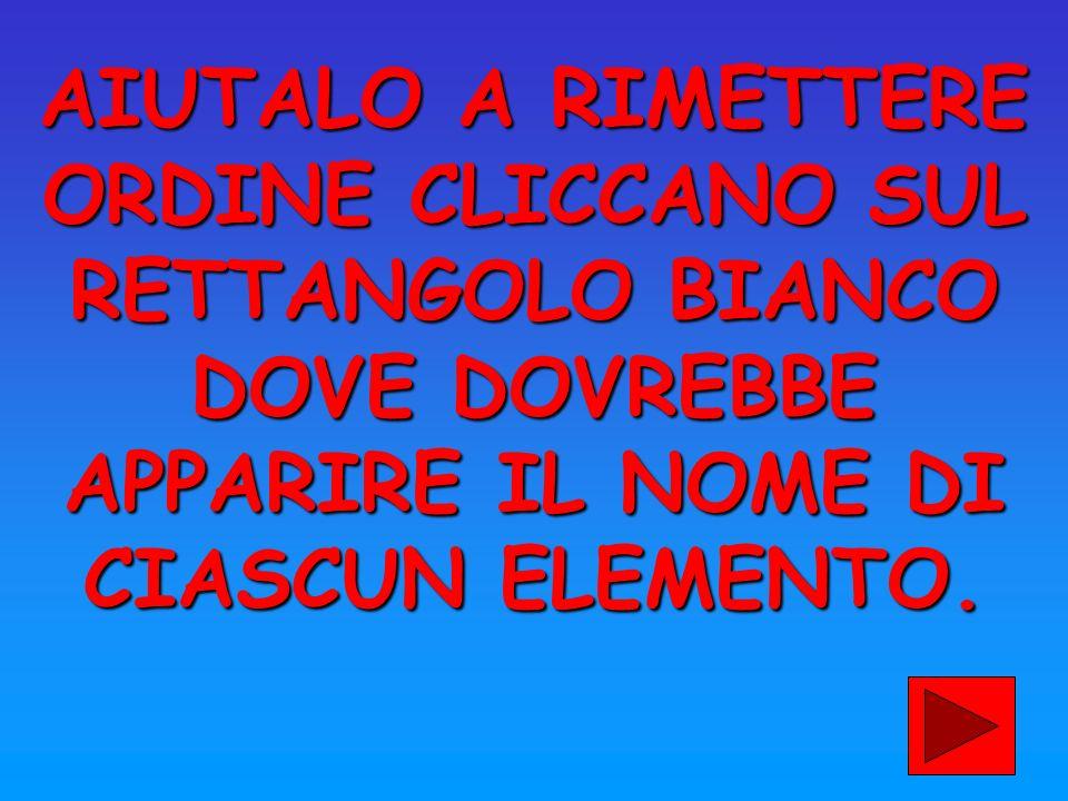 AIUTALO A RIMETTERE ORDINE CLICCANO SUL RETTANGOLO BIANCO DOVE DOVREBBE APPARIRE IL NOME DI CIASCUN ELEMENTO.