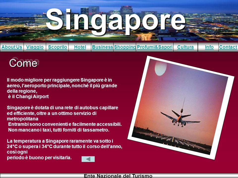 Come Il modo migliore per raggiungere Singapore è in aereo, l'aeroporto principale, nonché il più grande della regione,