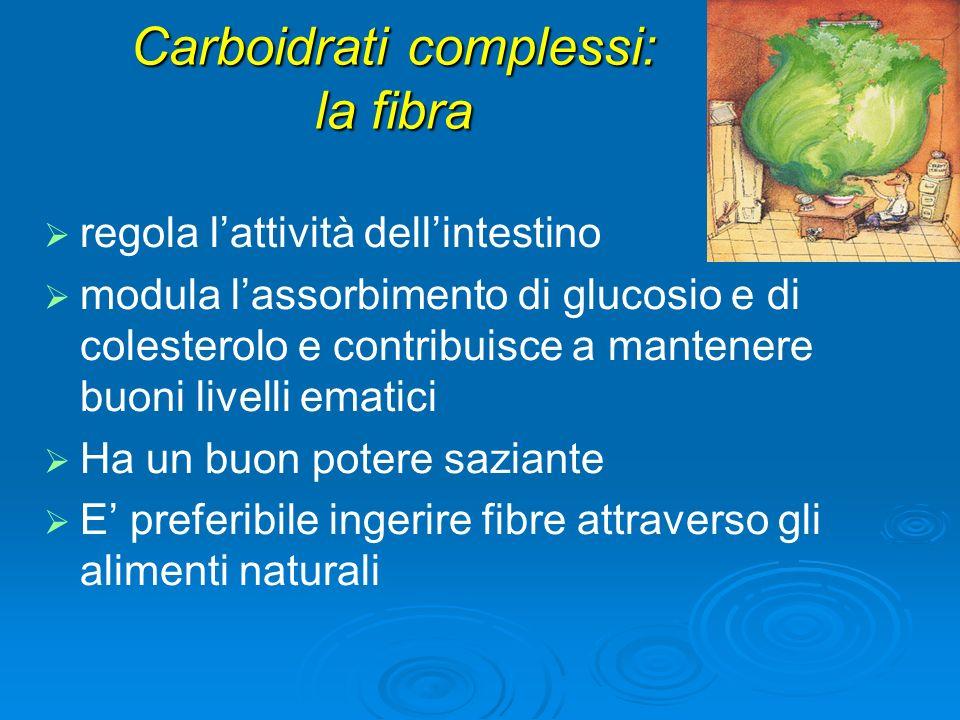 Carboidrati complessi: la fibra