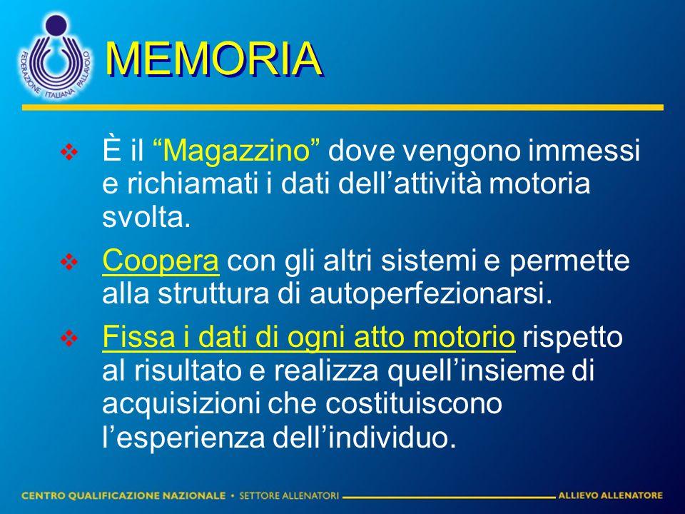 MEMORIA È il Magazzino dove vengono immessi e richiamati i dati dell'attività motoria svolta.